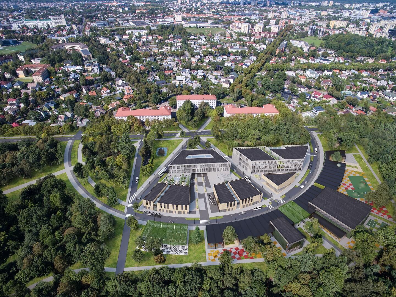 Kaunas, Ąžuolynas, konsepsinė vizija